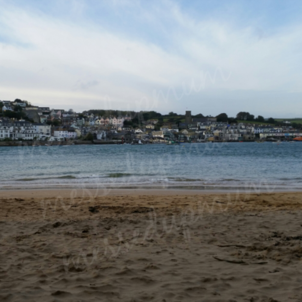 Salcombe - Messed Up Mum(2)