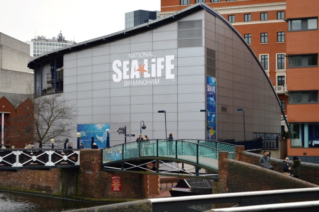 Birmingham Sea Life Centre Feb 2015 (220)