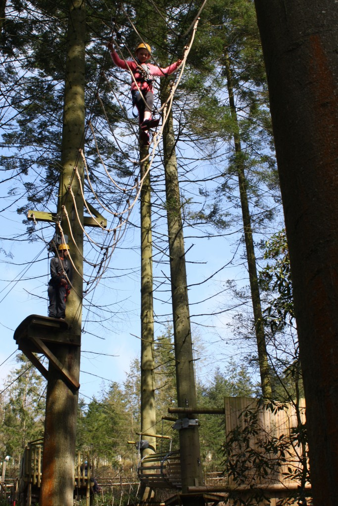 Aerial Adventure, Center Parcs, Holiday
