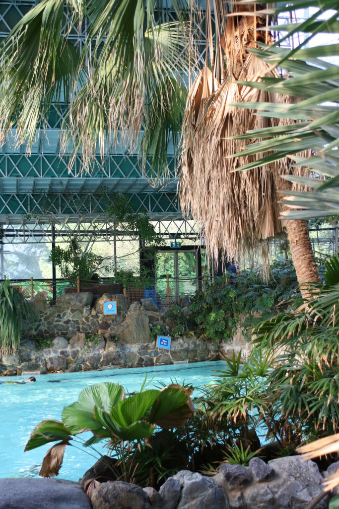 Subtropical Swimming Paradise, Swimming, Center Parcs, Holiday