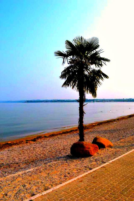 Lake Garda(1)