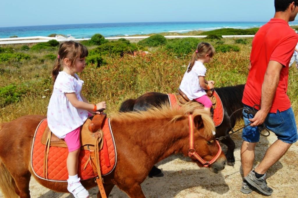 Kikoland pony rides