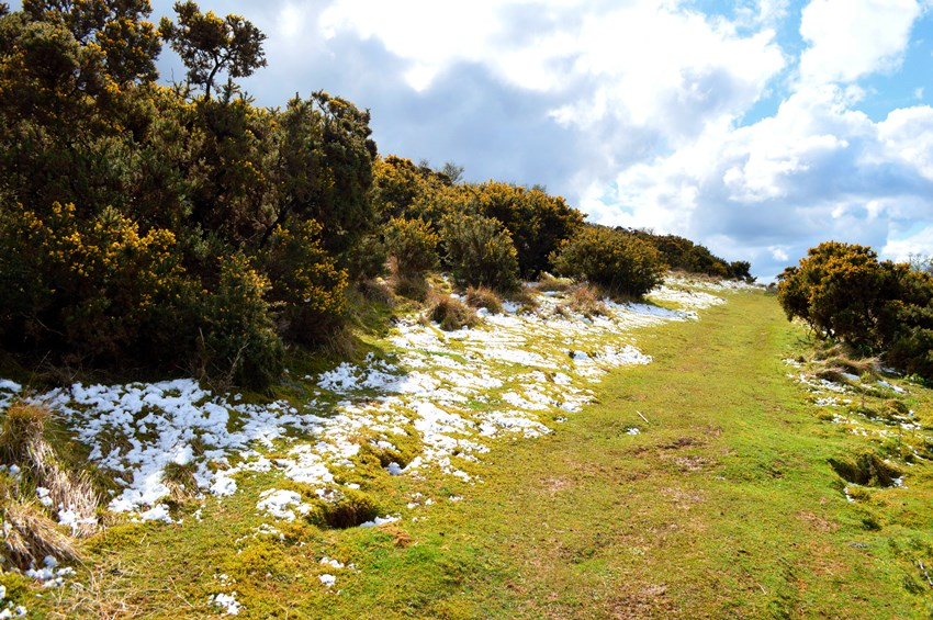 Cleeve Hill, Cleeve Common, Gloucestershire, snow, snow in April, April snow