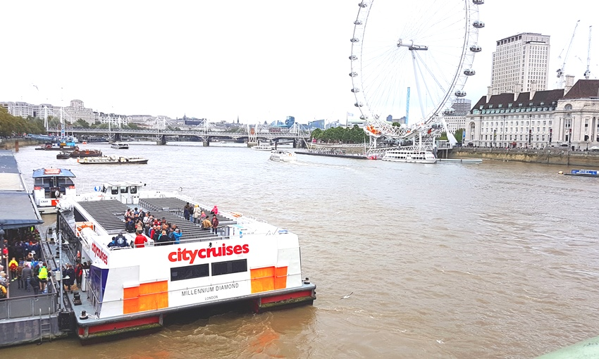 London Eye, City Cruises, London, The Thames,
